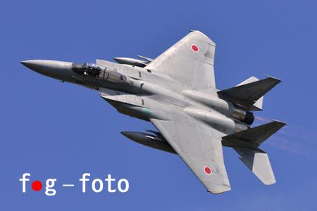 800_0279-s.jpg